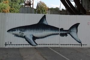 Рыбы забора музея мирового океана