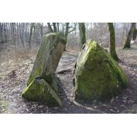 Камень Лжи в Пионерском