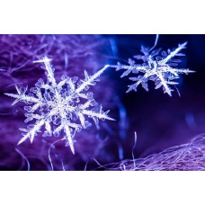 Снежинка - чудо природы