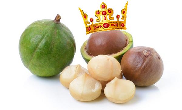 Почему макадамия макадамский орех?